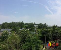 中国院子半山别墅 一线看湖400平豪门别院 您心中完.美家园
