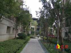 武汉华侨城前排观湖大双拼带大院子和露台送地下室 采光好 急售