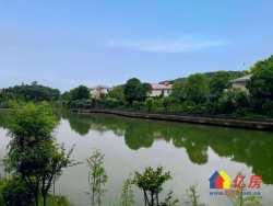 武汉后花园,独有的地理位置,升值空间巨大。唯一全省温泉水入户的独立岛居别墅