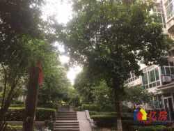 带学位,开发区一中,万科金域蓝湾旁水木清华毛坯大三房,双阳台