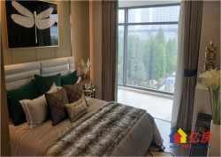 武汉江山 俯瞰江滩 270看江豪宅 奥山世纪园林路 专梯转户