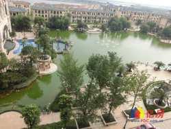 麦德龙商圈 黄陂区 盘龙城 恒大名都别墅 前厅后院 仅售300万