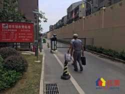 藏龙岛湖北美术学院旁 瑞和华府南北通透三房 精装修 看房方便