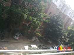 同鑫花园 双地铁满五唯一稀缺板式一梯二户公摊小 3室2厅2卫 131.86㎡