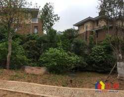 巢NEST精装别墅 两证满多年 正南朝向 前后花园80平