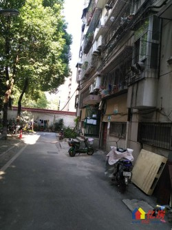 洪山区 街道口 七环科技公寓 3室2厅2卫  157.5㎡