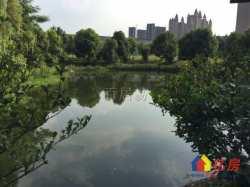 不限购 大洋彼岸 老证 独立别墅 自带池塘 带500平米花园 地上三层