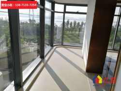 武昌滨江商务区一线江景住宅 270户户观江 楼下江滩公园