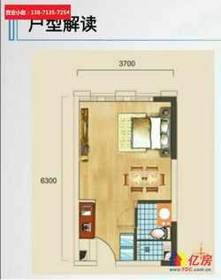 品牌酒店连锁,一百一千平到几千平 光谷步行街核心新房精装交付