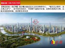 风水宝地+汉江长江交汇处+整半层发售!