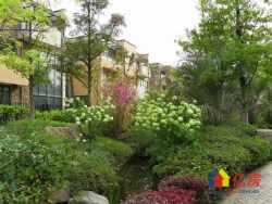 汤逊湖壹号 置换急售独栋别墅 送南向方正花园 性价比没有之二