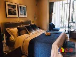 青山绿地新房公寓 地铁口房子 投资超级划算 2室2厅2卫  43㎡
