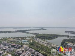 华侨城 二期 大平层 高层豪华装修 一线湖景 急售