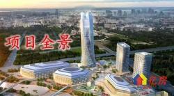 武汉城投集团绿地集团联手开发项目旺铺在售洼地