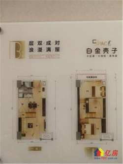 白金壳子三轨交汇交通便利小户型复式公寓