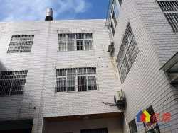 新洲区 邾城街 花卉里小区 9室4厅3卫 298.4㎡