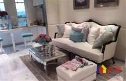 塔子湖 不限购 温馨小户型公寓 带天然气 一手新房0费用