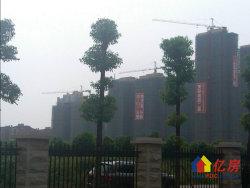 奥林匹克花园 精装4房  老证无税  楼层拎包入住低价售