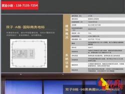三阳路江边天悦外滩,200平豪宅,全落地式玻璃外墙代理