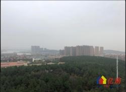 黄陂区 盘龙城 歌林花园三期林语境 3室2厅1卫  98㎡