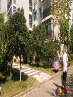 公务员小区、电梯2房2厅 可改3房 低于市场价急卖