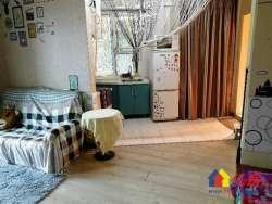 大智路地铁 世纪皇冠 1室1厅 中装 有煤管 老证 方便看房