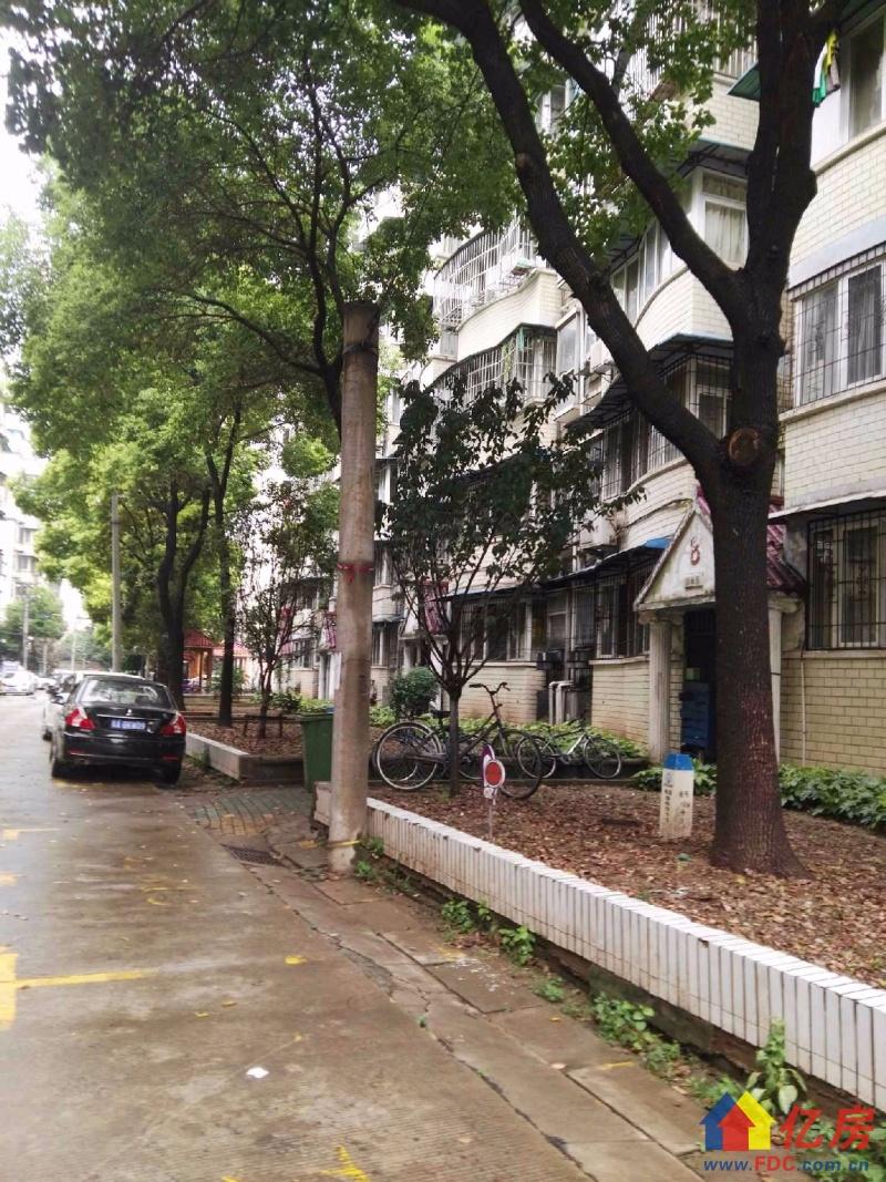 真实图片  拎包入住 特价房 看看本房你就明白,武汉青山区仁和路武青三干道建一路口和平乡大洲村二手房3室 - 亿房网