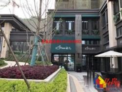 新城璟棠+汉阳四新方岛对面+6米一线临街小金铺+有天然气