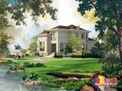 一线临湖独栋别墅 70年住宅 新房直售无任何后期费用