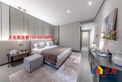 一线观江内环豪宅典范,开发商直售,200平平层