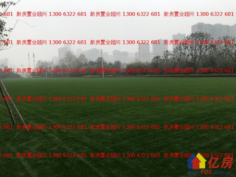 白沙洲 直接认购新房 新力城精装住宅 117平三房,武汉洪山区白沙洲武汉市洪山区白沙洲大道与八坦路交汇处二手房3室 - 亿房网