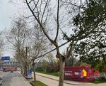 青山不限购 复试3房 地铁口50米 绿地开发 学校商业环绕,武汉青山区红钢城青山区青山公园前和平大道与建设11路交汇处二手房3室 - 亿房网