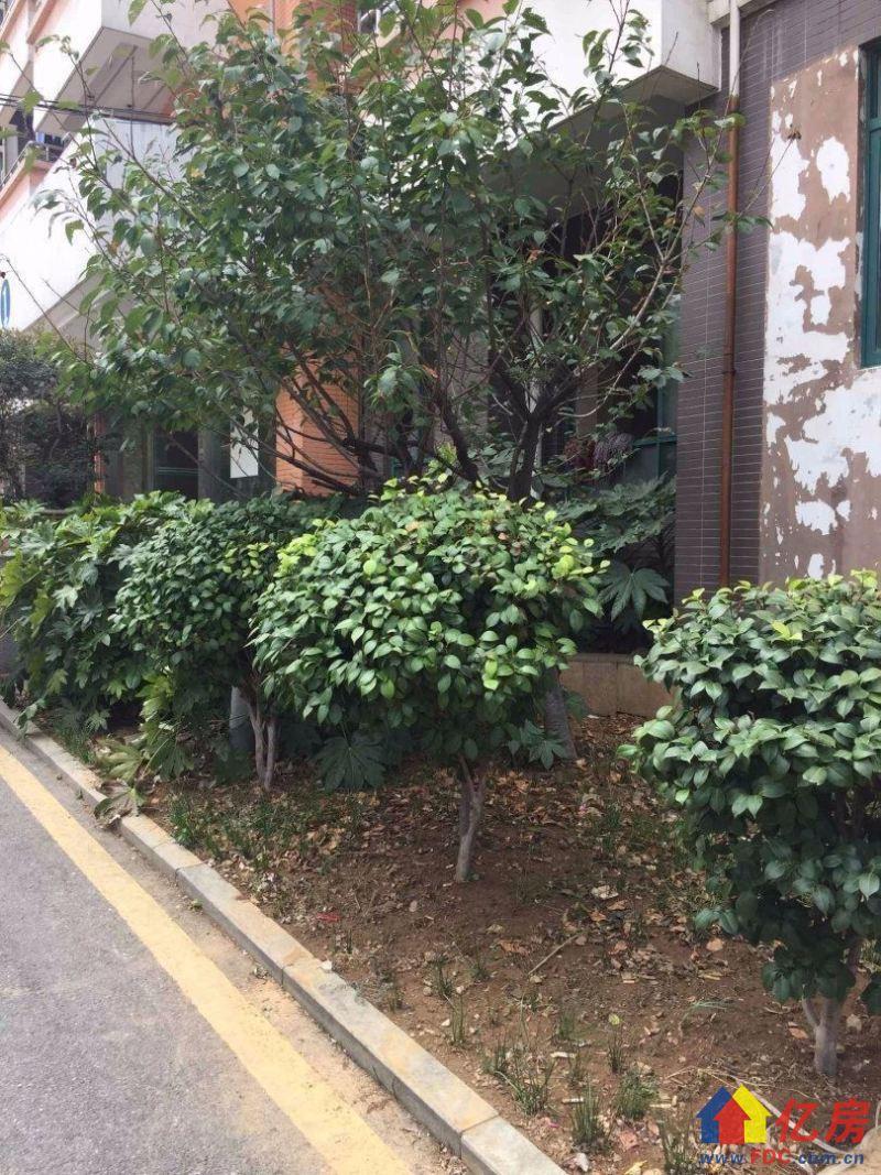 街道口少有花园小区 次顶楼 有学位仅售一周 112万可小刀,武汉洪山区街道口洪山区街道口南村110号二手房1室 - 亿房网