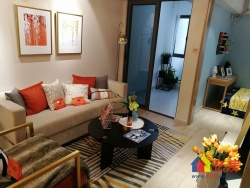汉口核心地段 小户型住宅来袭 近地铁口 新房出售