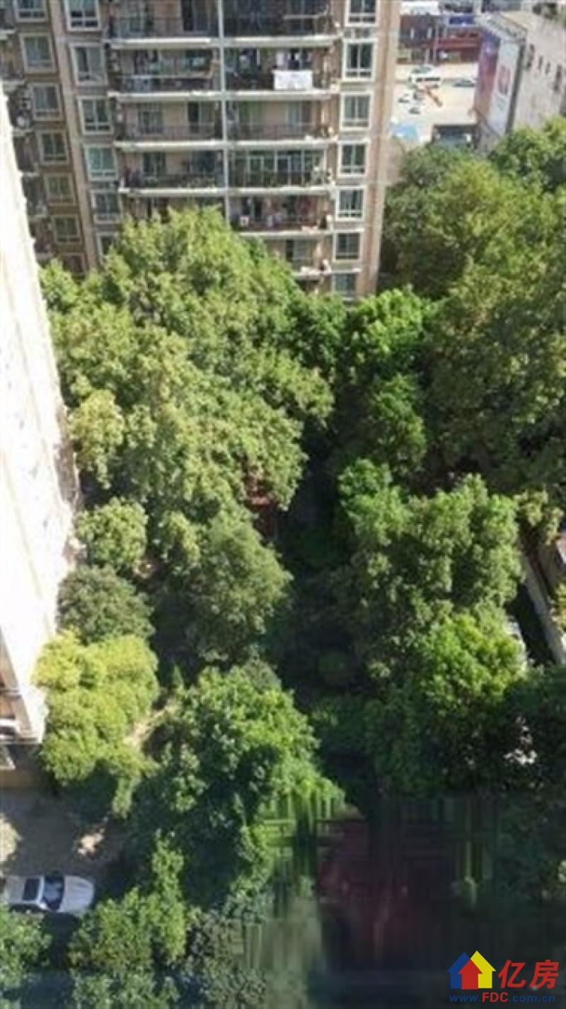 同济对面 崇仁路11中旁 陪读好房 高端成熟小区,武汉硚口区宝丰解放大道586号(蓝天宾馆对面该项目1楼)二手房2室 - 亿房网