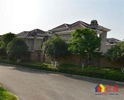 温莎半岛 不限购独栋别墅现房发售 全武汉唯一在售纯独栋别墅群