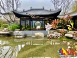 泰禾知音湖院子  一线临湖合院别墅臻品发售 泰禾地产匠心打造全国院子系列二十一城