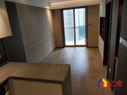 时代新世界 豪华装1房一厅 地铁口   港式装修 阳光充足