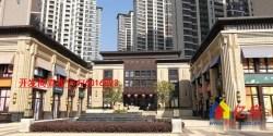 东湖高新政务中心核心底商+中建住宅底商238平+发展