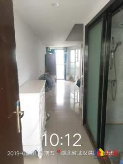 东湖高新区 大学科技园 中冶南方韵湖星光 2室1厅1卫 43m²