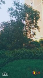 银泰御华园三期 婚房装修 电梯两房 高层观景 拎包入住,武汉江岸区后湖百步亭江岸新村174号二手房2室 - 亿房网