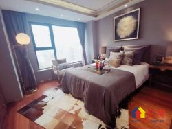 武昌丁字桥路,中南欢乐汇5.2米复式公寓通天然气
