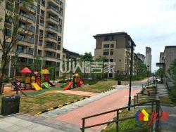 光谷东  神盘  紧邻地铁口低密度住宅