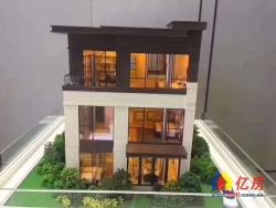 230万,买近300平的独栋别墅,一线近湖,地铁口,手慢无