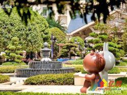 恒大科技旅游城 武汉市不限购区 意大利欧洲风情街