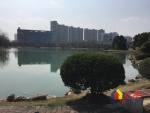 常青花园四小区  精装三房 无税  拎包入住,武汉东西湖区常青花园康居物业二手房3室 - 亿房网