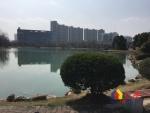 常青花园十一小区 老证 对口常青树实验 方正三房,武汉东西湖区常青花园东西湖区公园南路129号二手房3室 - 亿房网