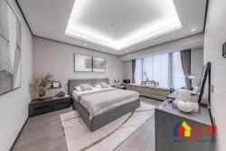 新房:一线临汉江+麦德龙区政府旁+江滩公园+160南北通透