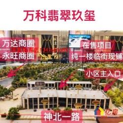 万科翡翠玖玺+双地铁口+协和医院+小区出入口