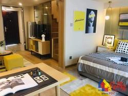 绿地派克公馆+5号线地铁口+loft公寓2室2厅2卫41㎡超低价格投资超级划算免